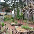 Aménagement et fleurissement d'espaces verts à Beauvais