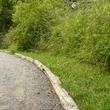 Chemin en gestion différenciée dans le Kent