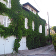 Murs et façade végétalisés