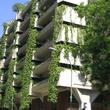 Bâtiment végétalisé à Madrid