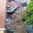 Ville végétalisée à Montréal