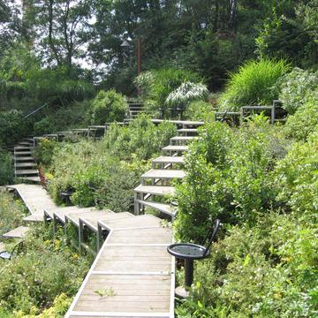 Parc urbain aménagé en gestion différenciée, Mons-en-Baroeul
