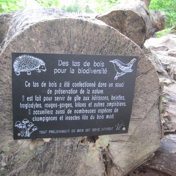 Panneau de sensibilisation sur le bois mort à Lille