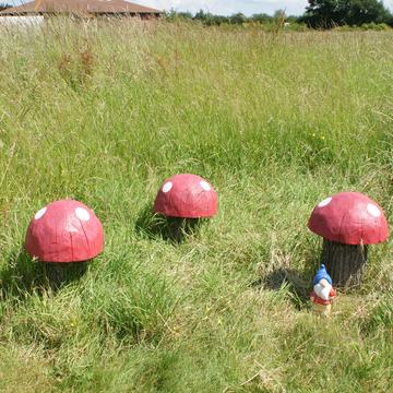 Espace vert et communication à Ashford