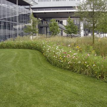 Tonte et fleurissement en milieux urbain