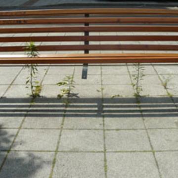 Herbe folles et mobilier urbain