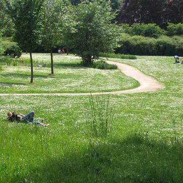 Tonte différenciée d'un parc urbain
