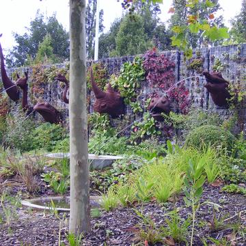 Clôture végétalisée à Lille