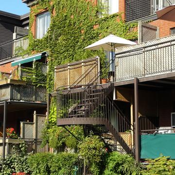 Mur et façade végétalisés à Montréal